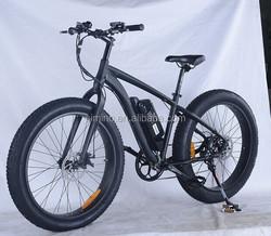 fat tire snow electric bike