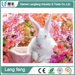 lovely animal 3D lenticular picture best quality and lower price