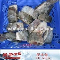 Frozen Tilapia Fish Steak HS36