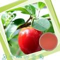100% natural de cereja acerola extrato de fruta