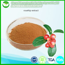 Health Products Natural Fructus Rosae Extract