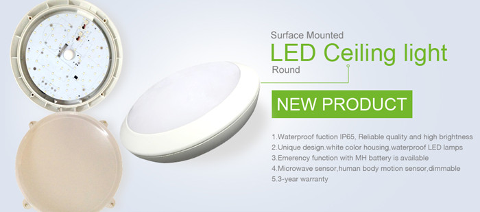 nieuwe ontwerp 15w plafondlamp douche plafondlamp ip65