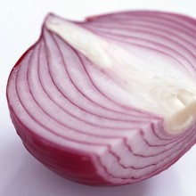 Pure natural Herbal extracts onion extract 1%-20% quercetin powder
