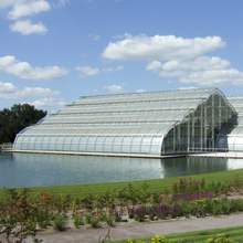 Agriculture Greenhouse Substrate For Hydroponic Vegetable