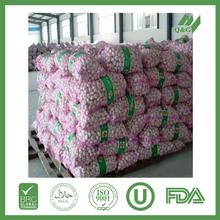 supply new fresh white garlic in china