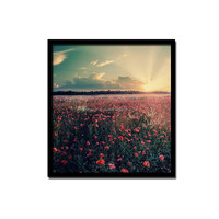 Wall Hanging Photo Frames Antique Looking Picture Frames