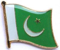 2014 new custom making metal lapel badges Pakistan flag pin