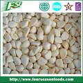 grossista china mercadorias variedades de alho