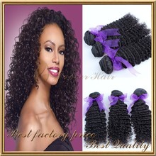 Wholesale new hair product mongolian expression kinky curly braiding hair