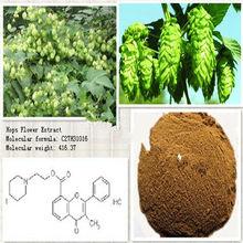 Bestselling plant extract Hops flower sleep aid in bulk supply CAS: 8016-25-9