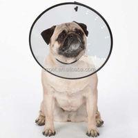 Veterinary Elizabeth Collar for Dogs