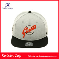 Custom Popular Fashion Snapback Hat Wholesale/Embroidery and Applique and Print Logo Acceptable Custom Snapback Hat