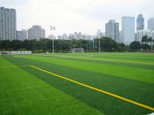 Artificial turf for golf course,Combined with nylon yarn and PE yarn.
