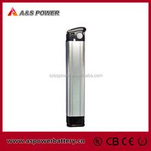 Hot sale LiFePo4 48V 10Ah E-bike Battery