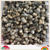 canned straw half mushroom cheap canend food with factory price