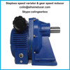 Stepless speed variator and gear speed reducer with foot screws