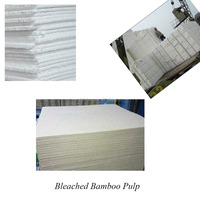 Good Quality TCF/ECF Bleached Bamboo Pulp