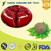 Hot product Anti-cancer Pomegranate Hull Extract Powder 40% Ellagic acid