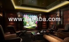 Home Theater / Interior Design