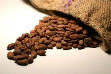 Cocoa, coffee, cassava, corn, plantains
