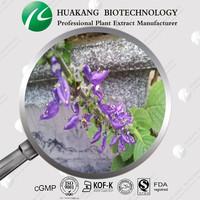 98% Forskolin/ flavones Coleus forskohlii P.E. extract
