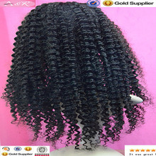 Wholesale Brazilian Kinky Curly Virgin Human Hair Remy Lace Front wig Manufacturer