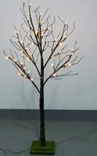 mossed lighted tree
