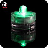 2016 New Products Paryt Lighting Flashing Acolyte LED Floralyte Submersible