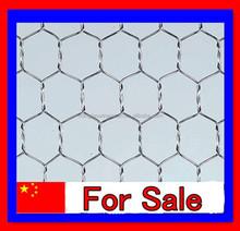 Galvanized hexagonal wire mesh as chicken mesh made in anping