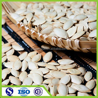 Edible dried snow white melon seeds,2015 new crop pumpkin seeds in shell