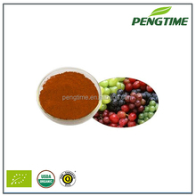 100% Water Soluble Grape Seed,Grape Seed Extract,Grape Seed Extract Powder
