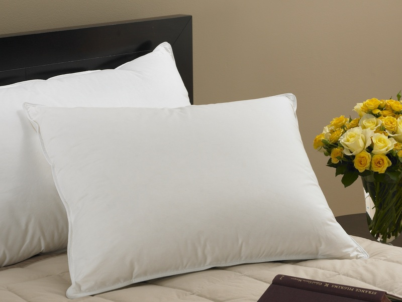 Pillows 100 pure duck feather pillow sleep with for Comfort inn hotel pillows