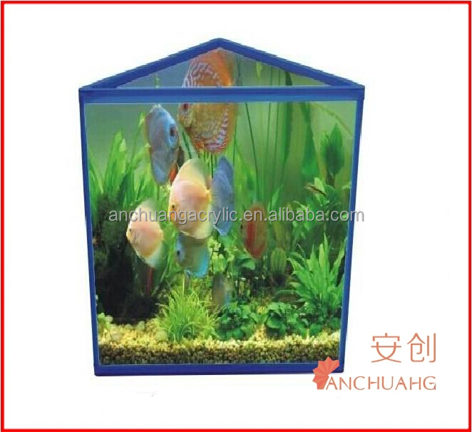 Thin Fish Tank_triangle Fish Tank - Buy Tropical Aquarium Fish ...