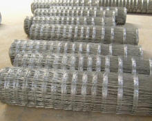 High Tensile Deer Fence/Farm Fence/Ranch Wire Fence(factory)
