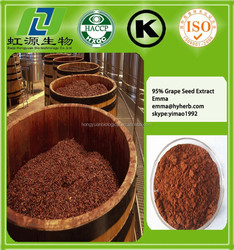 Most Professional Manufacturer Proanthocyanidins UV 95% Grape Seed Extract