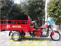 Thailand 200cc DT MOTOR brake disk cargo motorcycle