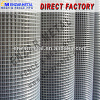 Electric Galvanized Welded Wire Mesh used for Flower Bed