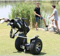 1000watt *2 for golf cart motor cycle
