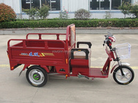 e trikes for sale in south africa