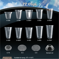 T-PP2-T dessert beverage water yogurt milkshake juice cold hot drinks PET killer disposable plastic PP cup with straw