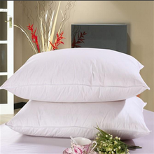 down pillow with housewife pillowcase