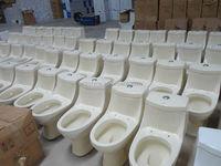 Ceramic Iranian wholesale washdown sanitary ivory toilet