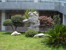 Pietra meravigliosa giardino con laghetto design cortile giochi d'acqua decorazione in pietra