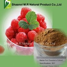Best Quality Raspberry Extract 10:1