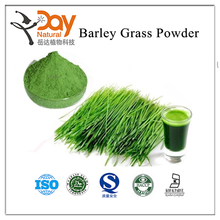 Free Sample Barley Grass Powder Vegetable Powder