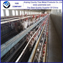 egg layers cage design/poultry plastic flooring popular in kenya , Uganda, Nigeria , Mozambique