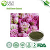 High Quality Natural Plant Extract Red Clover Extract