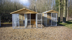 double dog kennel with solid bar runs and single dog kennel with mesh run
