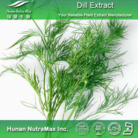 100% Natural Dill Extract, Dill Seed Extract,Dill Extract Powder 4:1 5:1 10:1 20:1