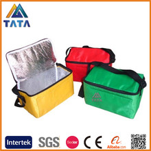 TATA Promotional Lunch Bottle Insulated Cooler Bag for Frozen Food